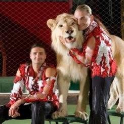 С 17 декабря —  премьера  циркового шоу  «Легенда» («Цирк братьев Запашных»).