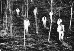 13 сентября – 30 октября. Выставка «Некрореализм»