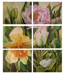 Картина «Жизнь сада. Тюльпан и нарцисс»