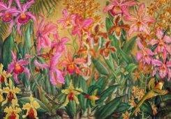 Картина серии Воспоминание о Мексике «Среди орхидей», 2008