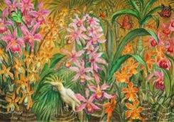 Картина серии Воспоминание о Мексике «Орхидеи с белым попугаем», 2008