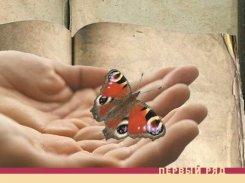 Йоэл Хаахтела. Собиратель бабочек