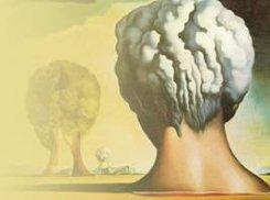 24 июля. Мозг и наркотики