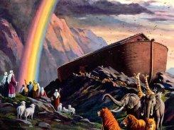 19 декабря — 31 января. Перезагрузка на Ноевом ковчеге