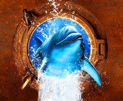 14 — 17 февраля. Ежегодный фестиваль активного отдыха на воде «Золотой дельфин 2013»