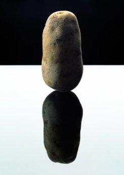 23 мая — 14 июня. Выставка «НАТЮРМОРТ — СОВРЕМЕННАЯ ГОЛЛАНДСКАЯ ФОТОГРАФИЯ»