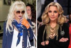 Виталию Милонову удалось доказать визовые нарушения со стороны Мадонны и Леди Гаги