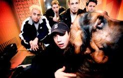 Против Bloodhound Gang возбудили уголовное дело