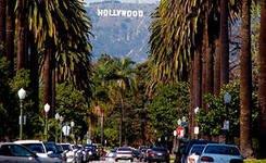Голливуд сходит с ума от понаехавших