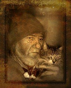 Кошки снижают хозяевам давление и продлевают жизнь мужчинам