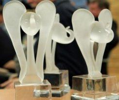 Дина Радбель. «Белый Слон» (Премия киноведов и кинокритиков) назовет лучшие фильмы за 2015 год 25 марта в Доме кино