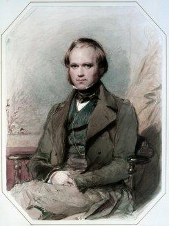 «Дарвин и мы»